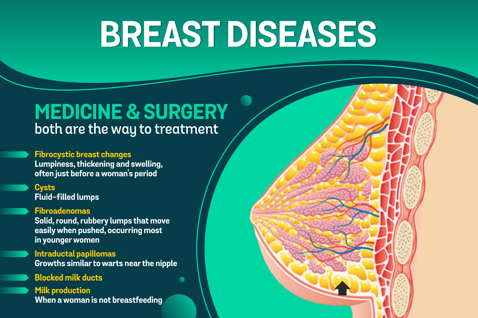 Breast doctor and surgeon in indore